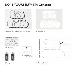 DIY-kit-Content